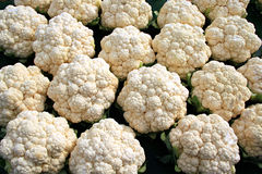 Cauliflower. A selection of cauliflower as it appeared at a rural farm market Royalty Free Stock Photography