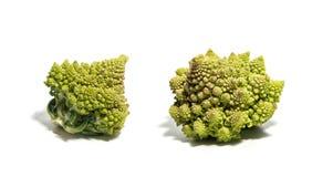 белизна изолированная cauliflower стоковые изображения rf