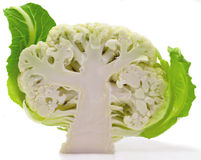 Cauliflower. With leaves isolated on the white Stock Image