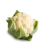 Cauliflower. Fresh cauliflower isolated on white background Stock Photography