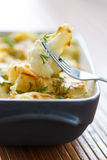 Cauliflower baked with egg and cheese Stock Photos