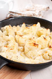 Cauliflower in bechamel sauce with cheese Stock Photography