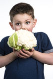 Cauliflower Boy Stock Photos