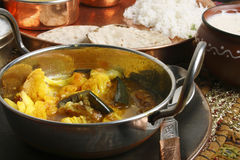 Cauliflower Brinjal Curry from India Royalty Free Stock Images