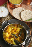 Cauliflower Brinjal Curry from India Stock Photography