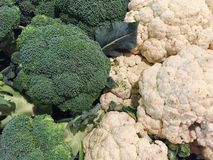 Cauliflower and broccoli background Stock Photography