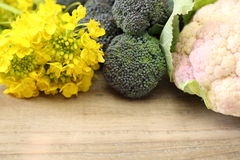 Cauliflower and Broccoli with rape blossoms Royalty Free Stock Image
