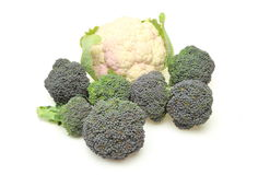 Cauliflower and Broccoli in a white background Stock Photo