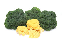 Cauliflower and Broccoli in a white background Royalty Free Stock Image