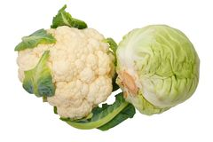 Cauliflower and Cabbage Royalty Free Stock Images