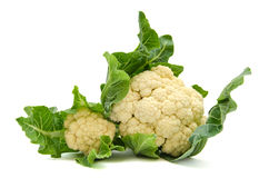 Cauliflower cabbage Royalty Free Stock Photography