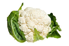 Cauliflower cabbage Royalty Free Stock Image
