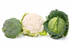 Cauliflower, Cabbage And Broccoli Stock Photography
