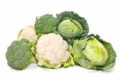 Cauliflower, cabbage and broccoli Royalty Free Stock Photos