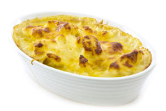 Cauliflower Cheese Stock Image