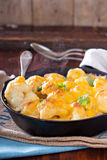 Cauliflower with cheese baked in a pan Stock Image
