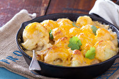 Cauliflower with cheese baked in a pan Stock Photos
