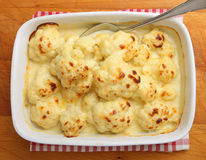 Cauliflower Cheese or Gratin Stock Photography