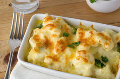 Cauliflower Cheese Meal Served Stock Photography