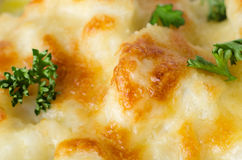 Cauliflower Cheese with Parsley Close Up Royalty Free Stock Images