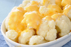 Cauliflower and cheese sauce Royalty Free Stock Images