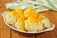 Cauliflower and cheese Royalty Free Stock Images
