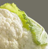 Cauliflower closeup Stock Images