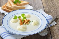 Cauliflower cream soup with croutons Stock Images