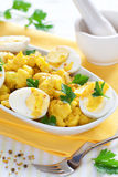 Cauliflower curry Royalty Free Stock Images