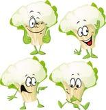 Cauliflower - funny  Stock Images