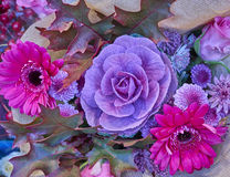 Cauliflower and Gerber daisies bouquet. Closeup stock photography