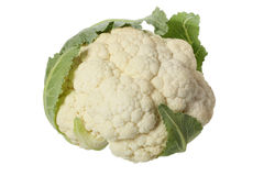 Cauliflower head Royalty Free Stock Images