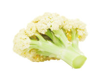 Cauliflower Head Royalty Free Stock Photography