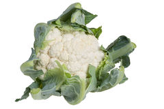 Cauliflower head isolated on white Royalty Free Stock Photography