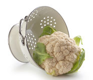 Cauliflower Royalty Free Stock Image