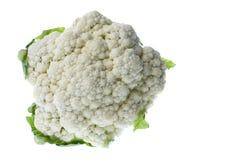 Cauliflower Isolated Stock Image