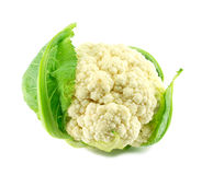 A cauliflower isolated Royalty Free Stock Photos