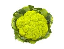 Cauliflower; Isolated on white Stock Images