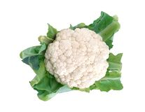 Cauliflower isolated on white Stock Images