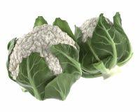 Cauliflower isolated Royalty Free Stock Images