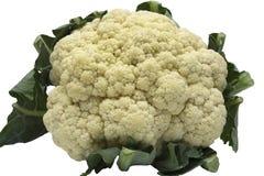 Cauliflower isolated on white background Stock Photography