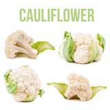 Cauliflower isolated. On white background Royalty Free Stock Photos