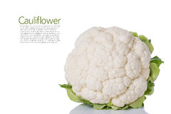 Cauliflower. Isolated on a White Background. Copy Space Royalty Free Stock Images