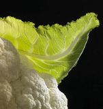 Cauliflower and leaf detail Royalty Free Stock Image