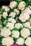 Cauliflower in the market Royalty Free Stock Photos
