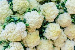 Cauliflower on market place. Ecological food royalty free stock images