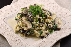 Cauliflower mushroom risotto. Cauliflower risotto with 3 types of mushroom and parsley on a white dish Royalty Free Stock Photos