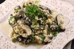 Cauliflower mushroom risotto Royalty Free Stock Image
