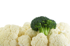 Cauliflower and one broccoli. With white copyspace Stock Photography