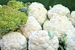 Cauliflower and Romanesco Stock Photo